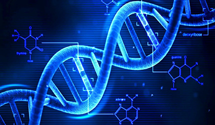 IL DNA PER CONOSCERE LE PROPRIE ORIGINI
